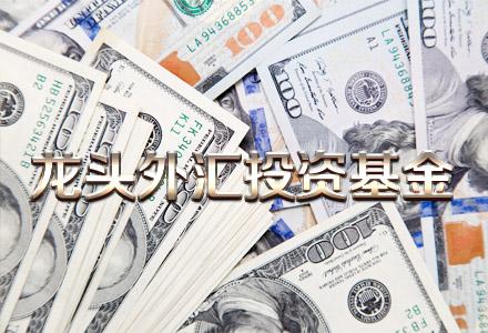 龙头外汇投资基金